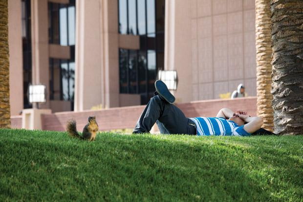 CSUN student napping between class in front of the Oviatt Library. Photo credit by Ivanna Valdivia
