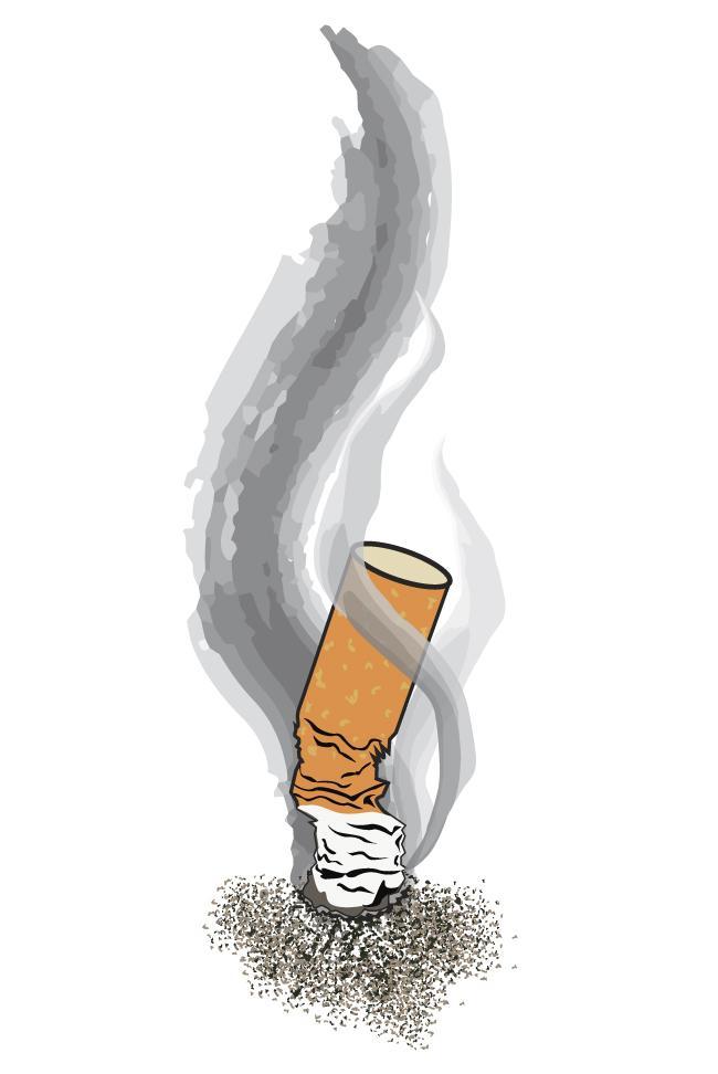 Illustration by: David J. Hawkins / Daily Sundial