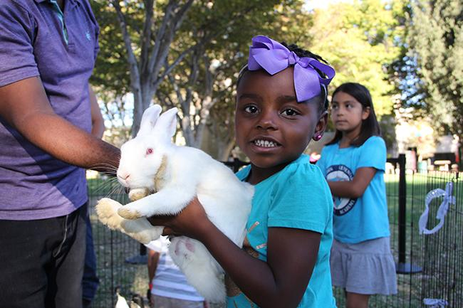 The Family Fun Zone on Sept. 26 welcomes children of CSUN staff and students. Face painting, a animal petting station, food, and games were offered to everyone who attended. Mia, 5, held the bunny with the help of her dad. Photo Credit: Victoria Lopez/Contributor