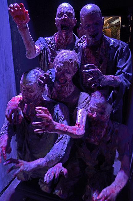 """""""Walkers"""" not only infest the prison in season four of """"The Walking Dead"""" but the maze for """"Horror Nights"""" at Universal Studios Hollywood. The props are realistic as the performers that will appear around in the labyrinth. Photo Credit: Vince Nguyen/ The Sundial"""