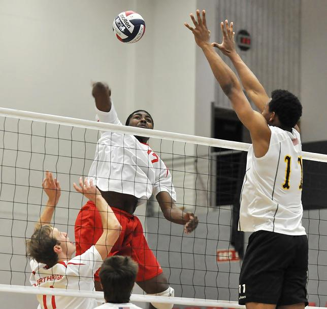 POINT AND KILL: Matador middle blocker Greg Faulkner (17) attempts an attack against Long Beach State on Feb. 11 at the Matadome. Sundial File Photo.
