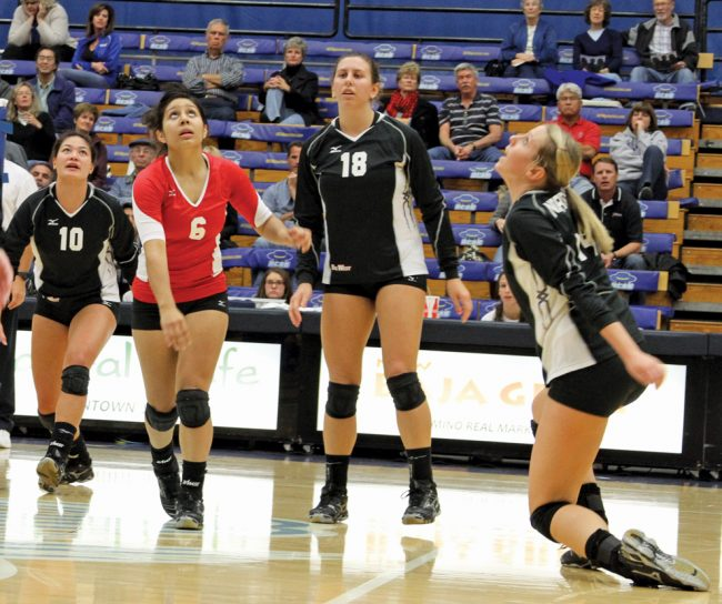 W-Vball: CSUN trails UCSB by a game in standings, take them on at home