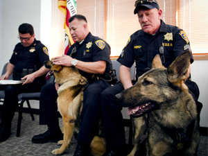 CSUN Police Department introduces new K-9