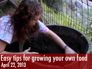Easy tips for growing your own food
