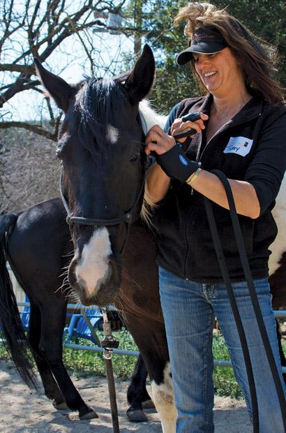 Terry Carroll, a certified equine specialist, places a bridle on Willow at the end of one of the Horse Mornings sessions. Photo credit Ken Scarboro/ Senior Photographer