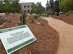 Ecologically-friendly gardens sprout around campus