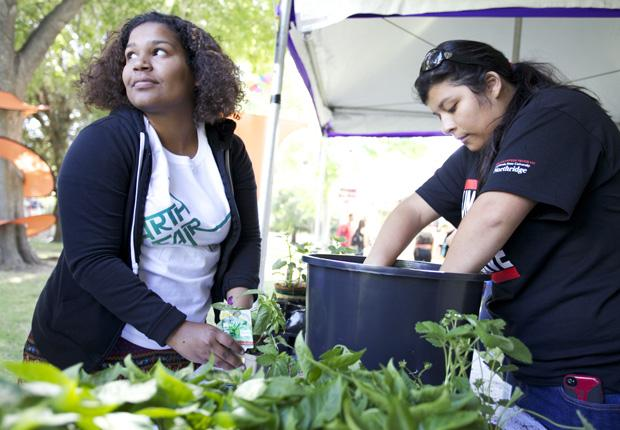 Sarah Pecle, senior food science and administration major, and Belen Herrera, sophomore urban studies planning major, help plant food at the Unified We Serve booth at the Earth Day Fair. Photo credit: Loren Townsley / Photo Editor