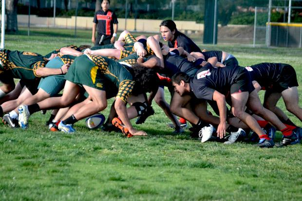 Players dig in during a scrum, going after the ball, during a friendly game against the University of Montana. CSUN had been without a men's rugby team for 18 years, brought back in the summer of 2012. Photo credit by John Saringo-Rodriguez/Daily Sundial