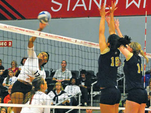 Women's Volleyball: Balanced attack helps Matadors stay undefeated in Big West
