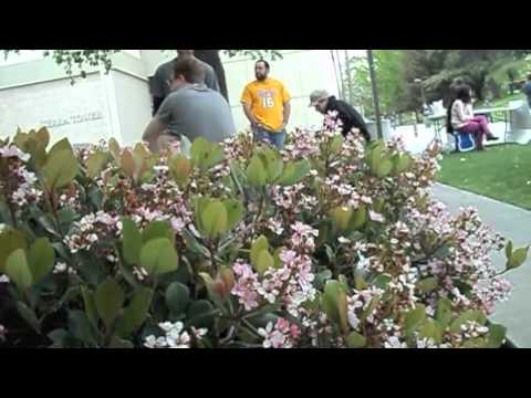 Campus Voice - Earth Day
