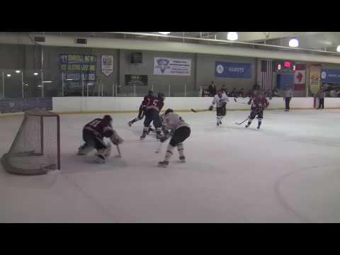 CSUN hockey shocked by COC