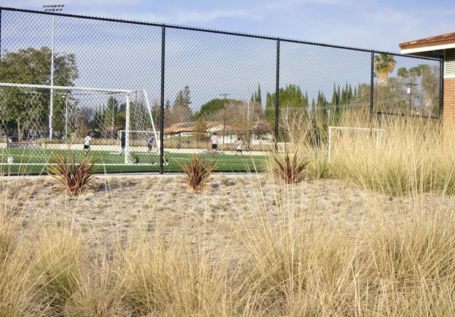 Drought-resistant plants were planted around the SRC athletics field where students can be seen playing soccer on the turf utilizing artificial grass to preserve water in Northridge, Calif.