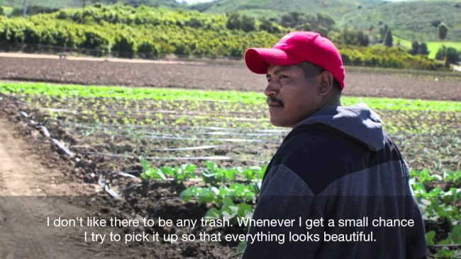 Underwood Family Farms offers sustainable produce to CSUN community