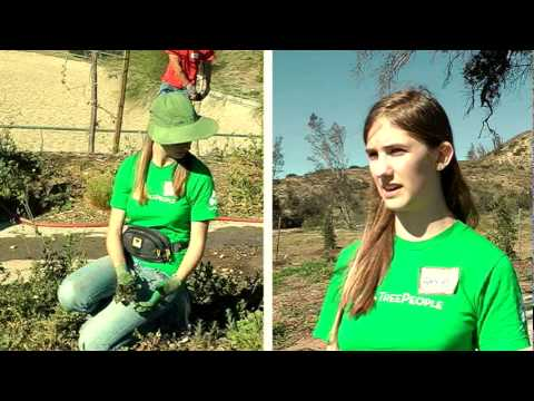 Valley View News; Jalima Maldonado - TreePeople