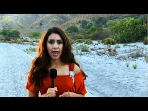 Valley View News; Mayra Castaneda - LA Pollution