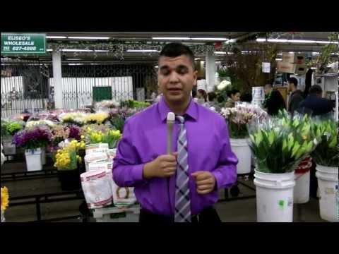 Valley View News; Raul Delgado - Valentine's Economy