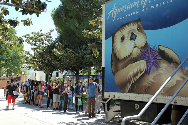 CSUN students lined up to see some animals from Aquarium of the Pacific at the Earth Fair on Thursday. (Photo Credit: Magaly Barajas/Contributor)