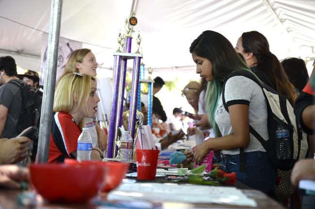 Meet the Clubs Day places emphasis on student groups, organizations, services