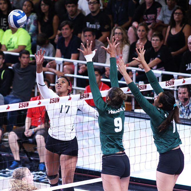 Women's Volleyball: Matadors defeat Hawaii for second time in program history