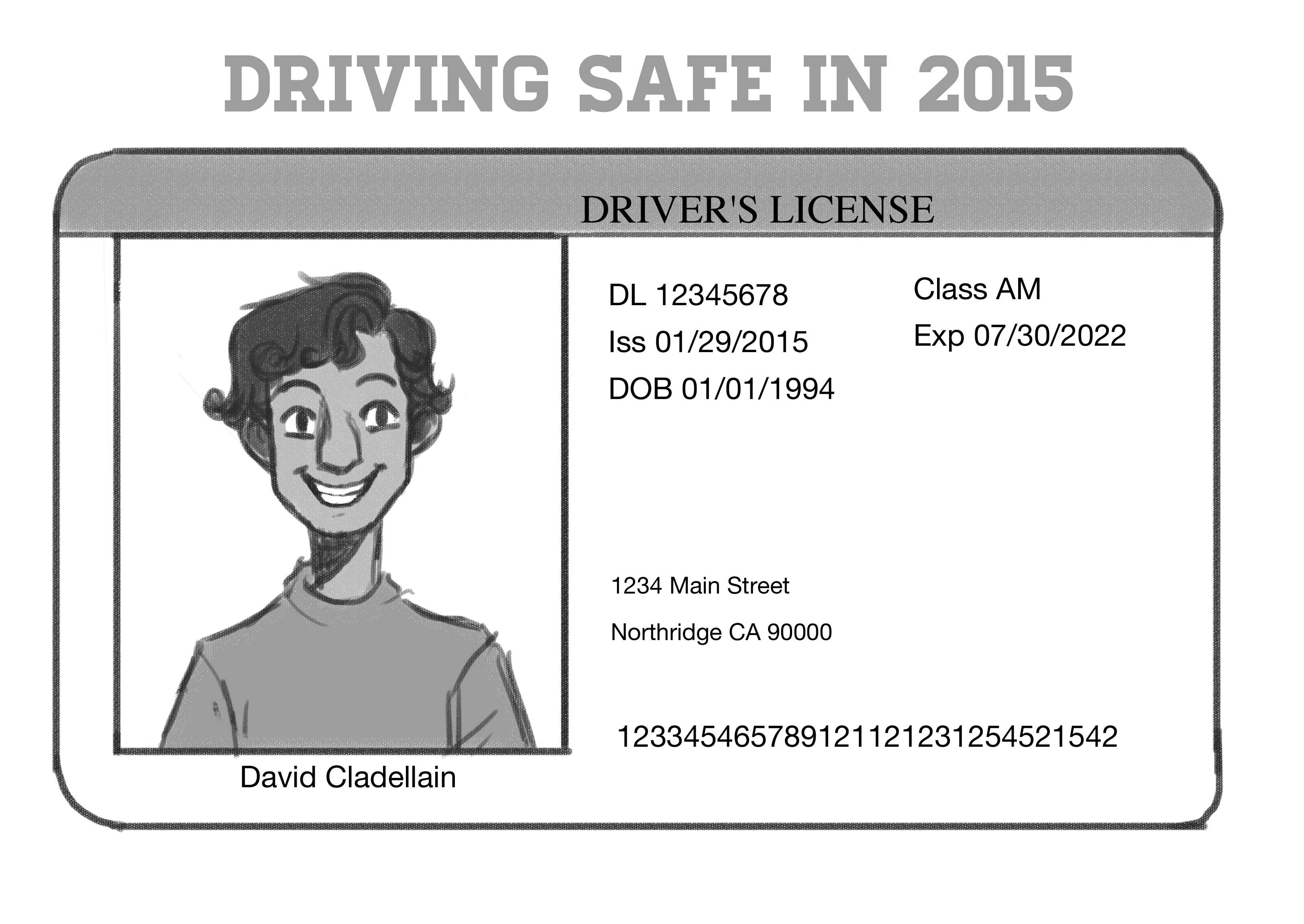 Safe Driving For All