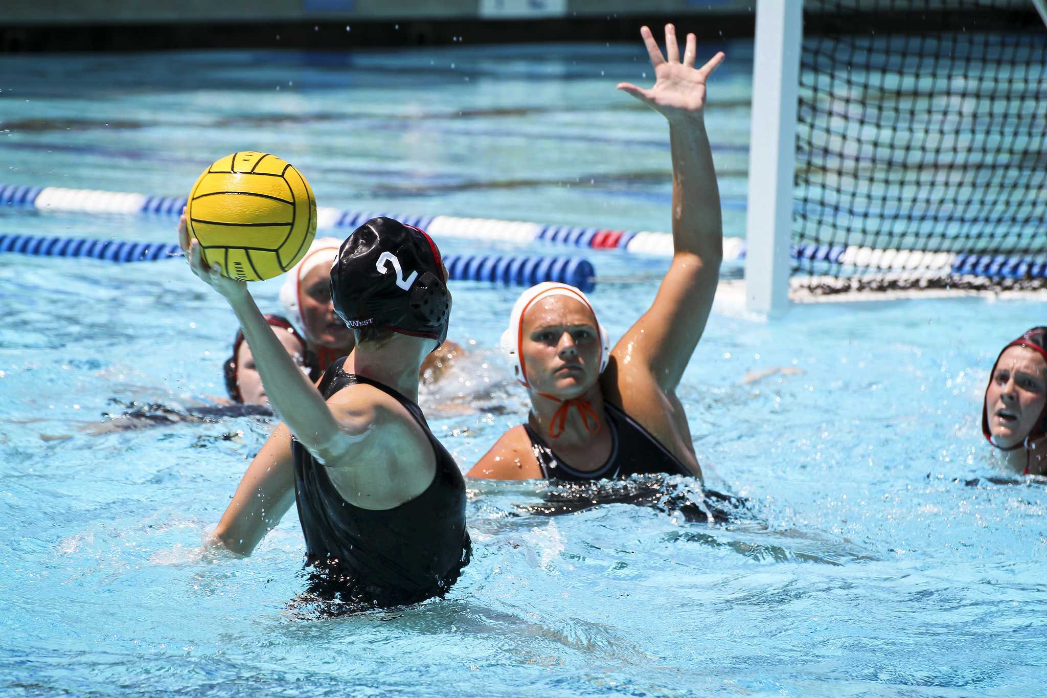 CSUN women's water polo releases 2016 schedule