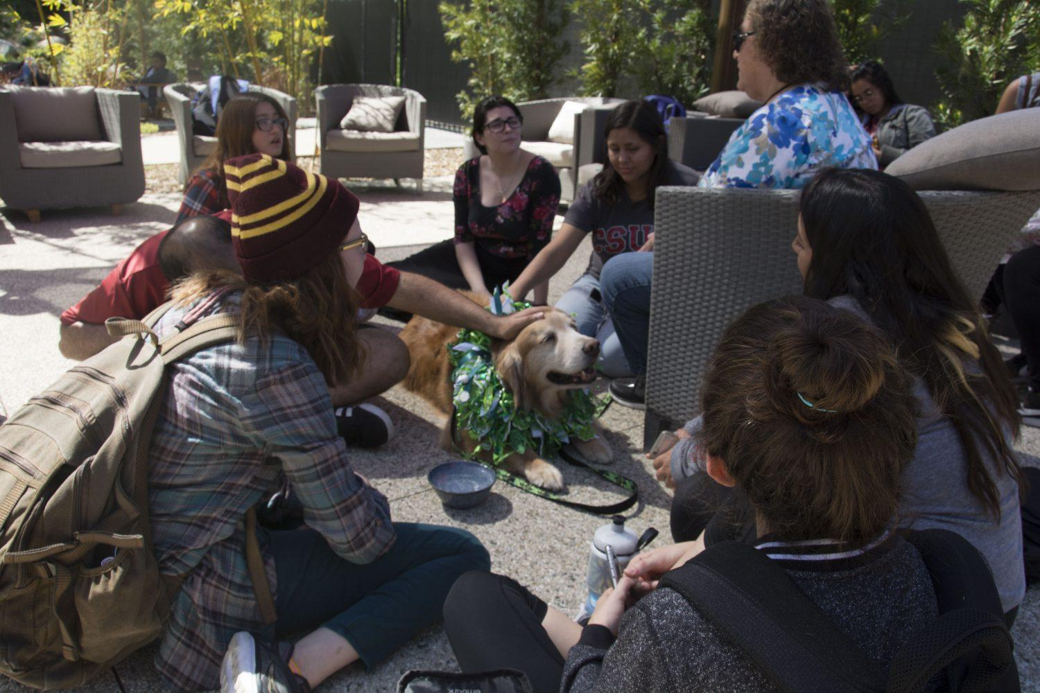 CSUN+students+gather+around+Hank%2C+a+10-year-old+golden+retriever%2C+brought+to+campus+by+owner+Beverly+Radloff+in+order+to+relax+students+for+their+upcoming+midterms.+Photo+credit%3A+Nicollette+Ashtiani