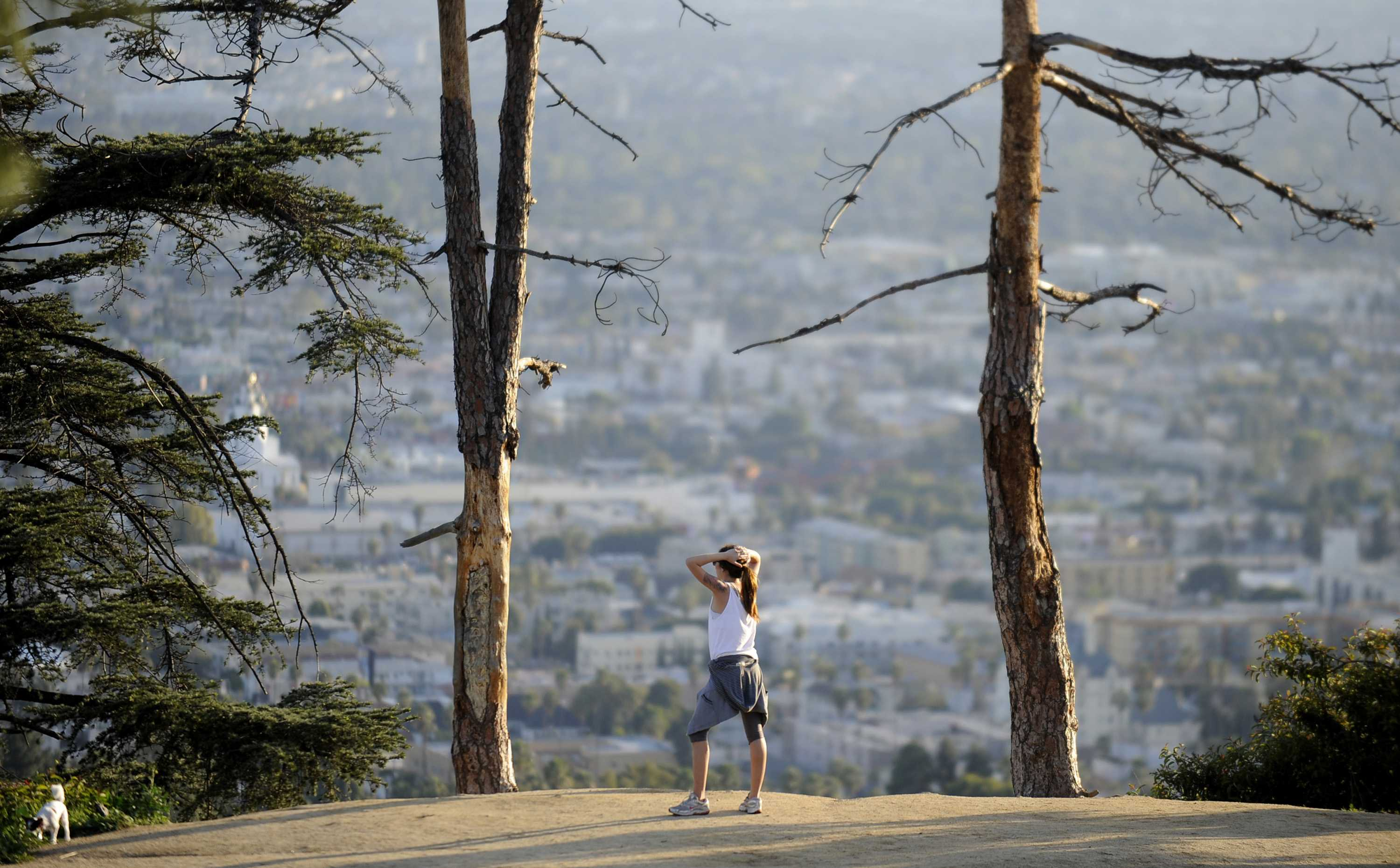 Where to hike during the Runyon Canyon closure