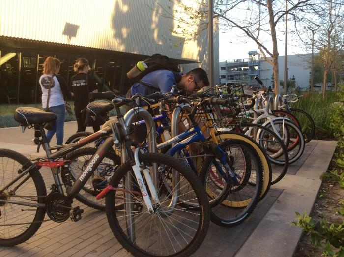 Crime trend: bicycle thefts at CSUN