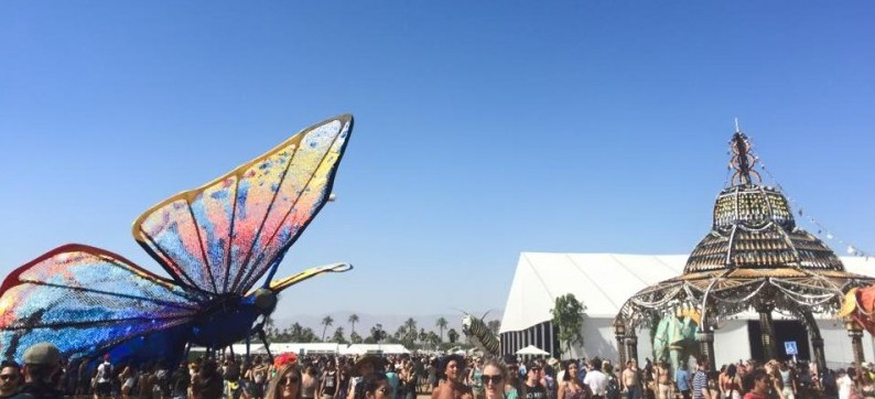 Large butterfly hovers over crowd