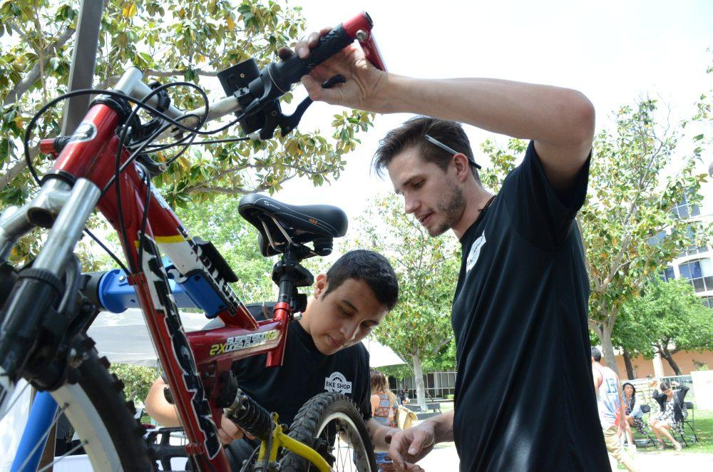 Two male mechanics work on a bicycle