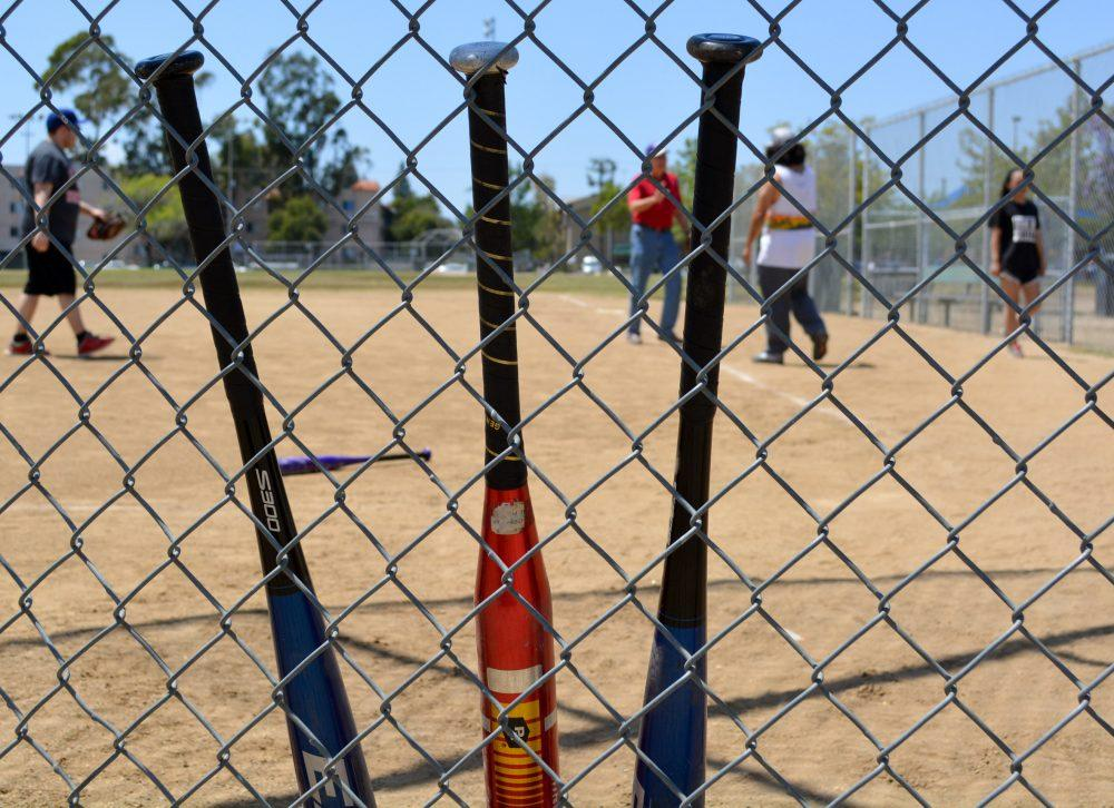 Baseball bats shown lines up against he fence