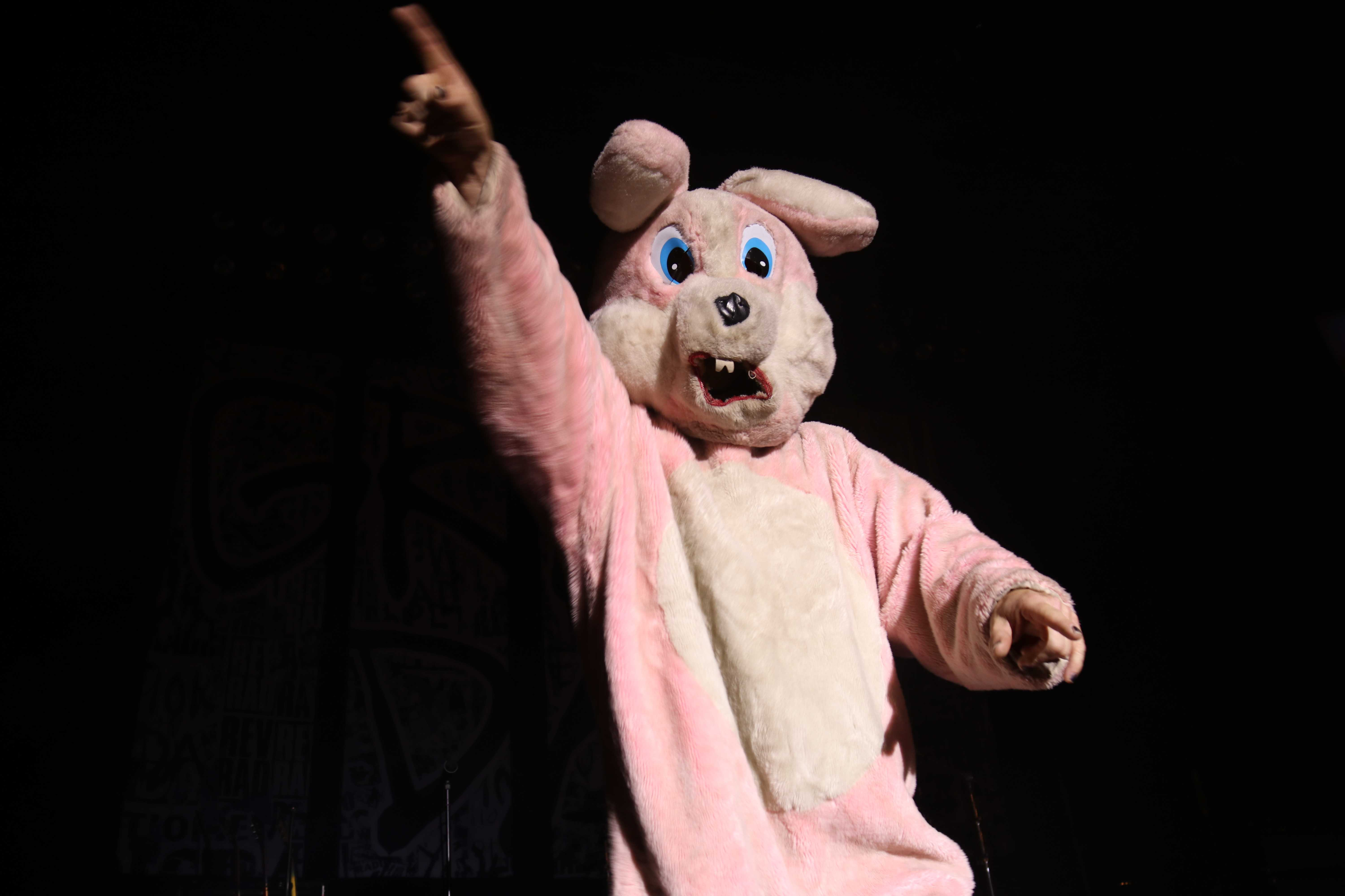 Someone in a pink bunny costume is pictured