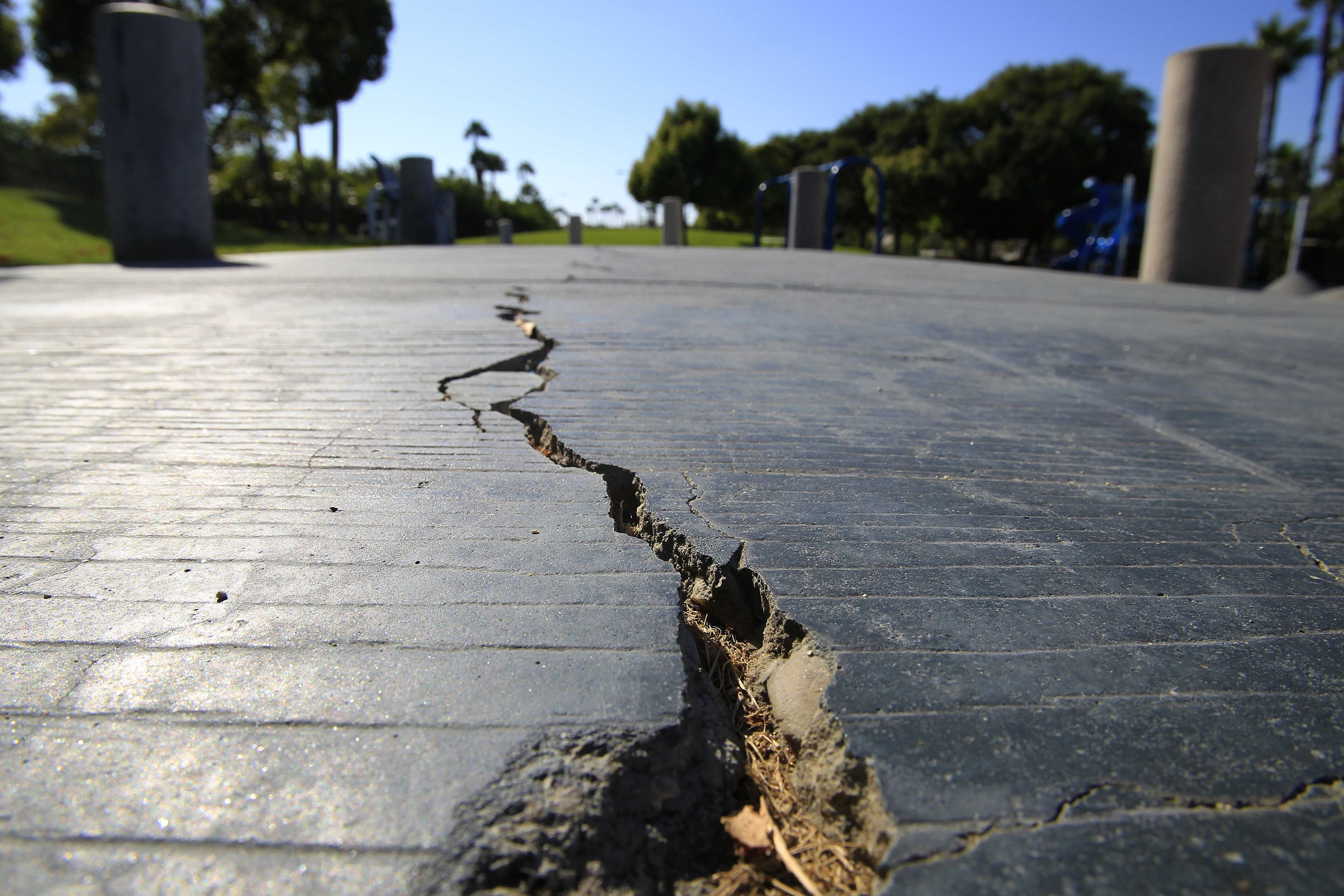 Cracks in the sidewalk pictured