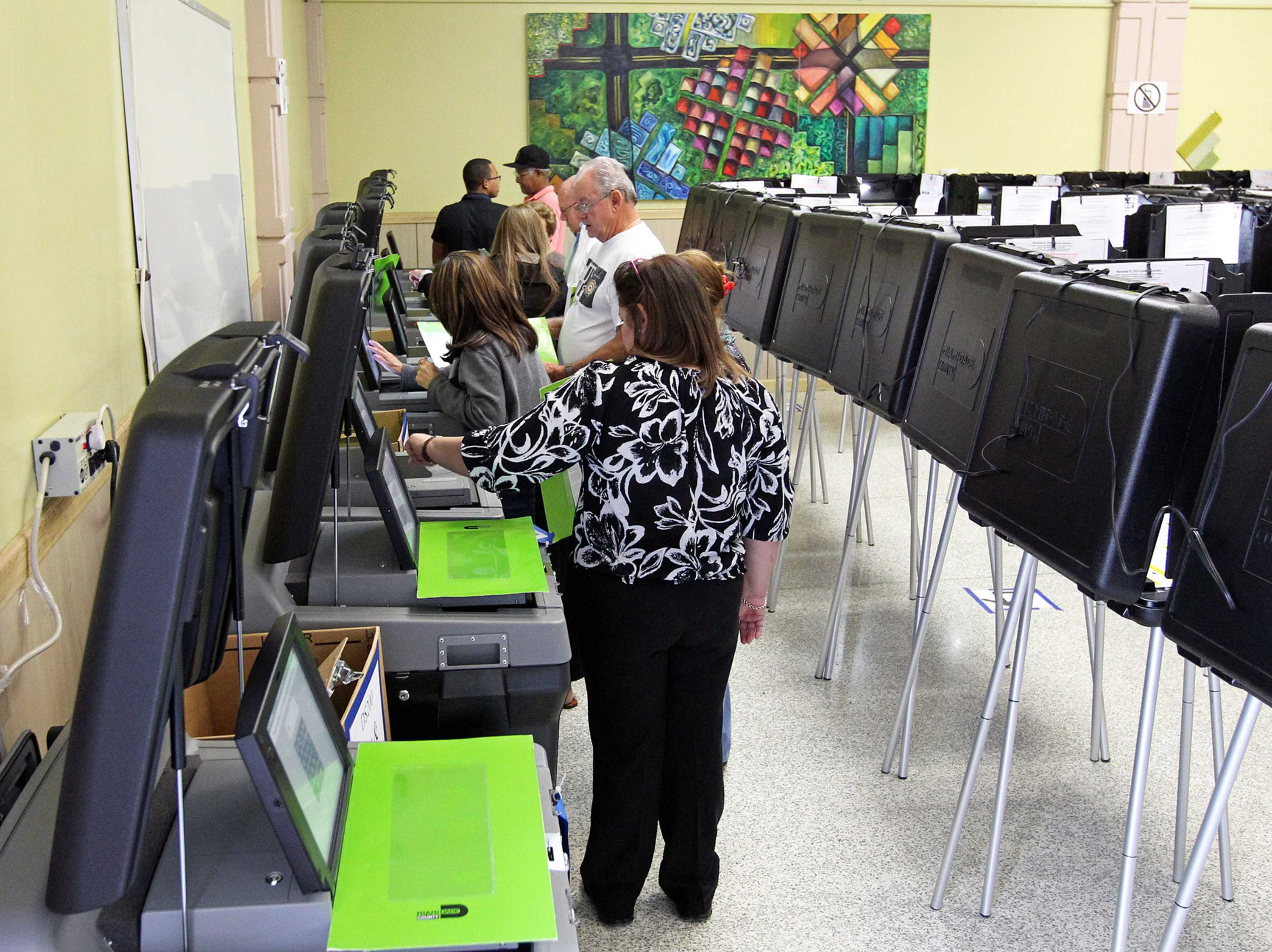 Photo shows people voting