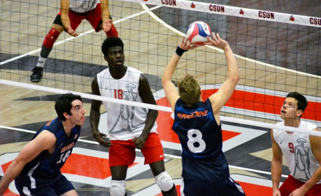 CSUN volleyball player pictured waiting for the ball from pepperdine