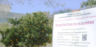 photo shows sign outside csun orange grove