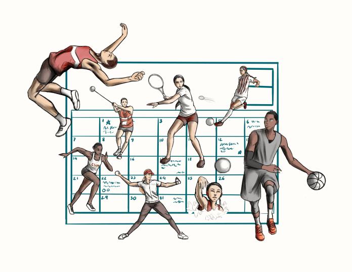sports+calendar+illustration