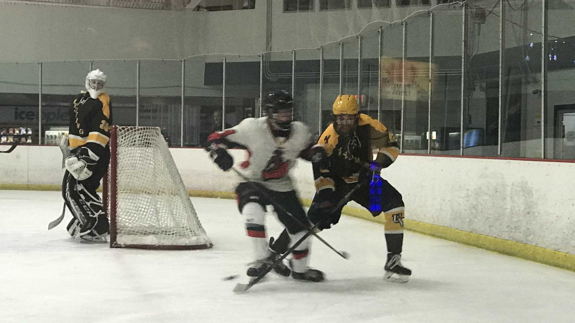 Two ice hockey players fight for the puck.
