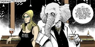 """Political cartoon of woman with angry face wearing a black dress reading Women Voters. Next to her an elephant saying """"If I said you had a beautiful body, would you let me make sweeping decisions about its reproductive health?"""""""