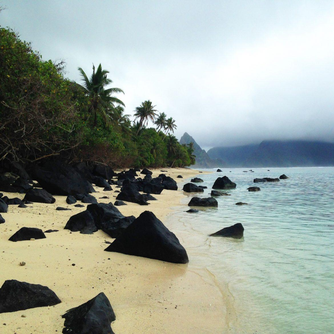 beach with black rocks green forest yellow sand and clear water