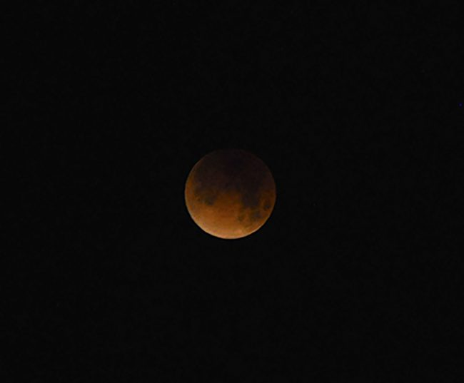 Matadors witness rare total lunar eclipse from campus