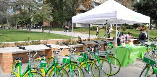 green Lime Bikes parked outside next to Lime Bike booth