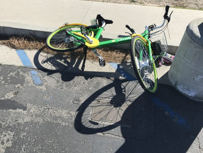 The Sour Side of CSUN Limebike