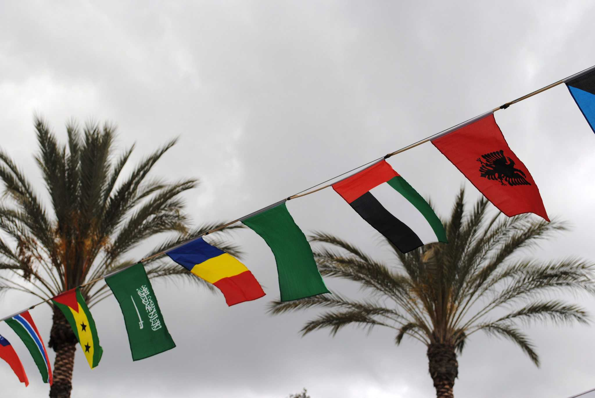different countries flags blowing in the wind