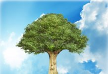 a large green tree on top of a shattering Earth thats floating in the sky