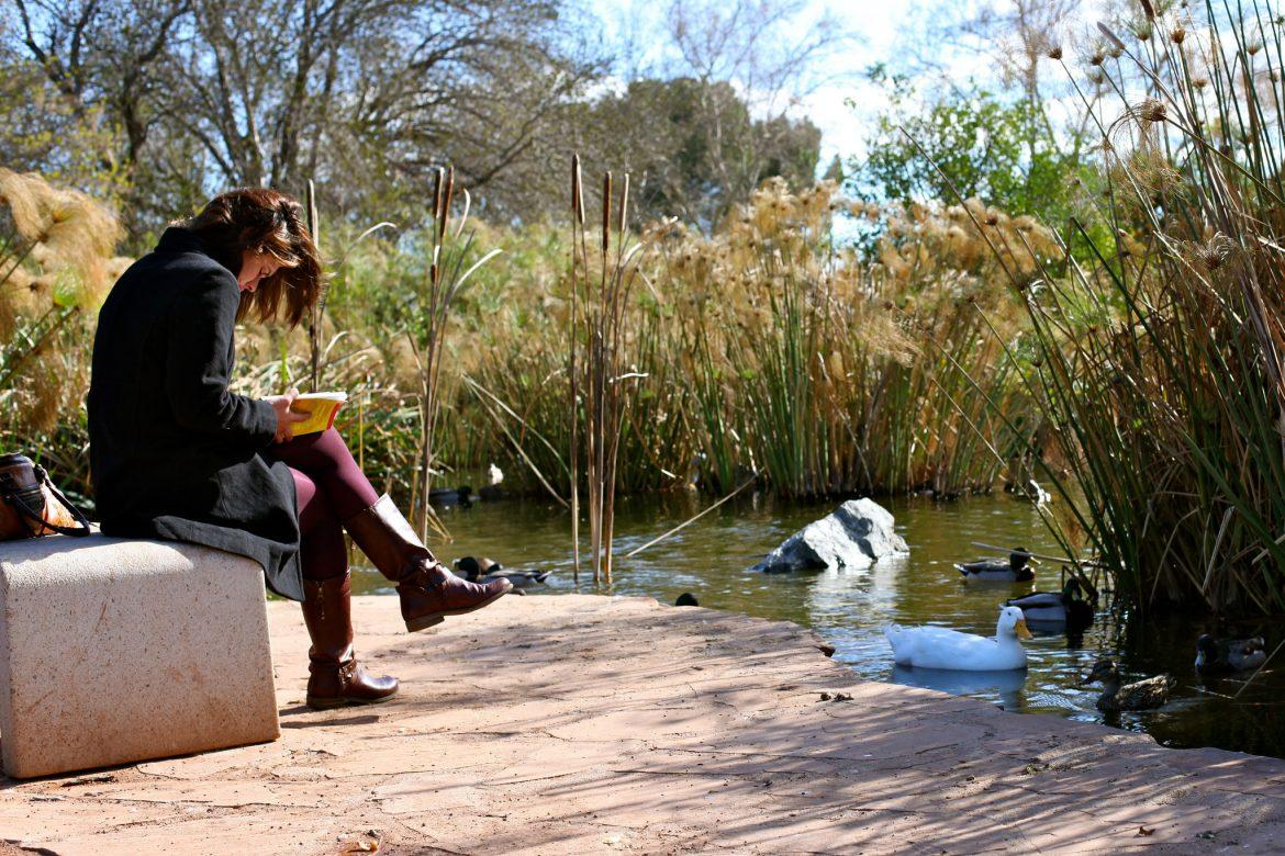 A+student+studies+in+the+relaxing+setting+of+the+duck+pond.+Photo+credit%3A+Brita+Potenza