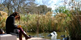 woman sits at edge of pond while reading a book