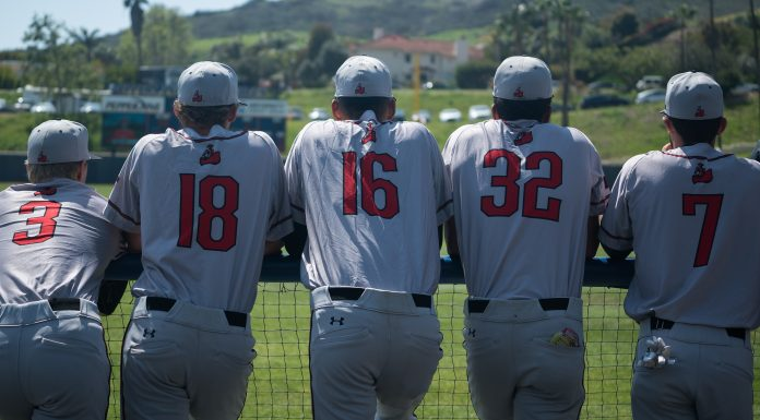 CSUN baseball players in grey uniforms lean against railing as they watch the game