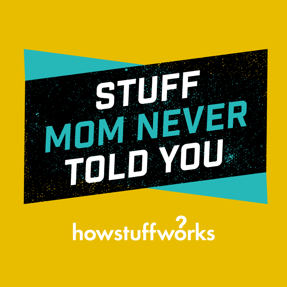 stuff mom never told you .png