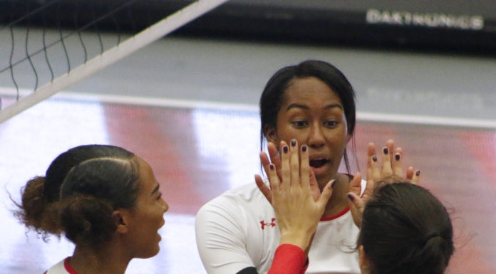 volleyball players cheering